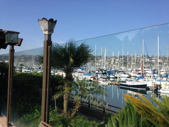 Best Western Plus Island Palms Hotel & Marina: great view