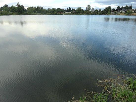 Lakeview Inn Centralia : The Lake
