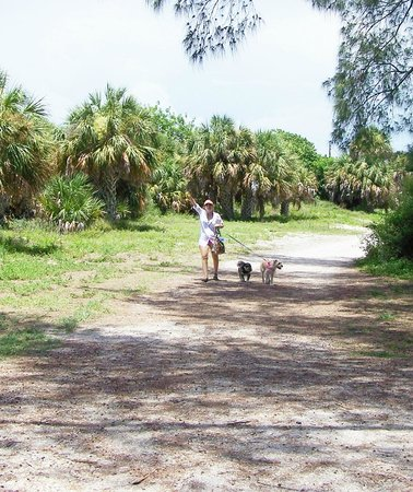 Fort De Soto Park: trail leading from Paws Playground to beach