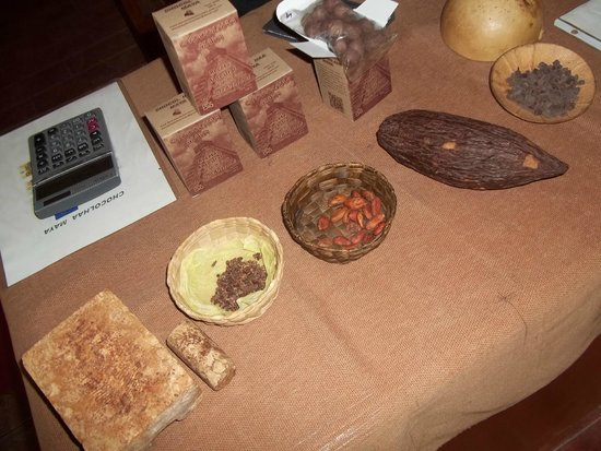 Cenote Maya Park: history of chocolate making
