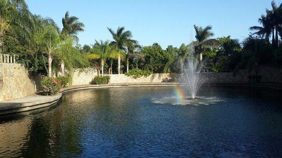 Clarion Suites Roatan at Pineapple Villas: Laguna