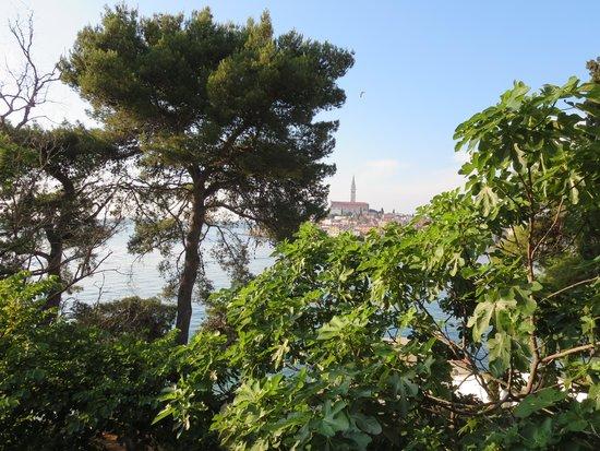 Island Hotel Katarina: View from the balcony