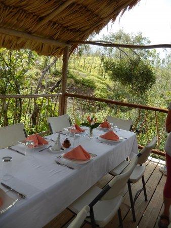 Hidden Valley Inn: dining in the jungle