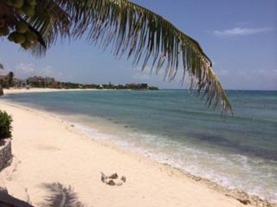 Hotel Akumal Caribe: room 418