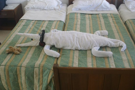 Homere Hotel: Crocodile made from towels with our headphones!