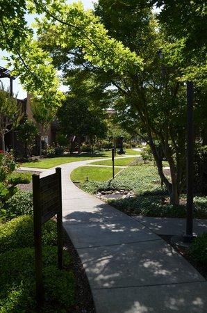 The Lodge at Sonoma Renaissance Resort & Spa: Path to the main lobby area