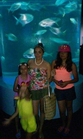 Texas State Aquarium: 07-06-14