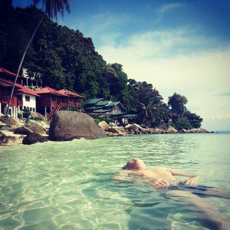Senja Bay Resort: in front of the resort