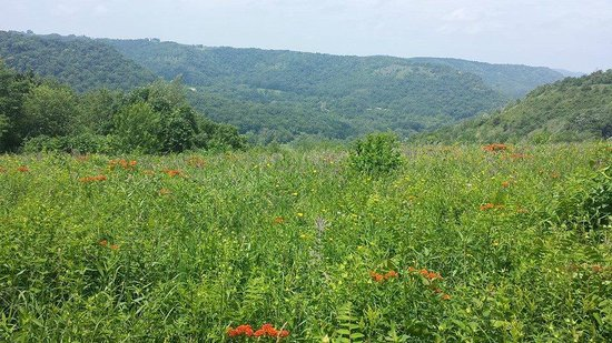 Great River Bluffs State Park: View from King's Bluff
