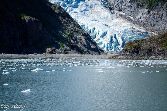Kenai Fjords Tours: Holgate Glacier view