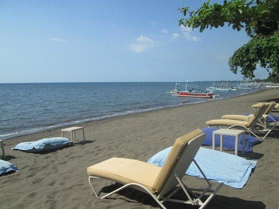 The Lovina: Beach area