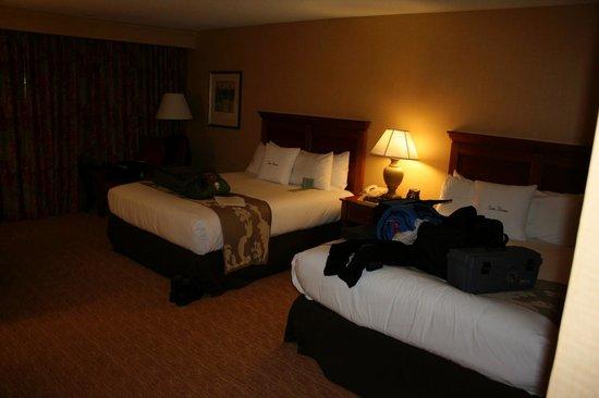 Motel 6 West Memphis Ar Hotel Room