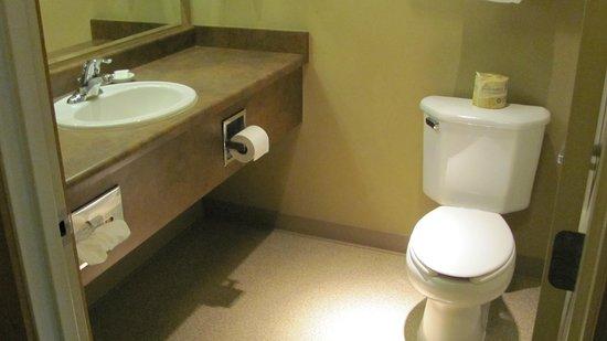Copper River Princess Wilderness Lodge: bathroom