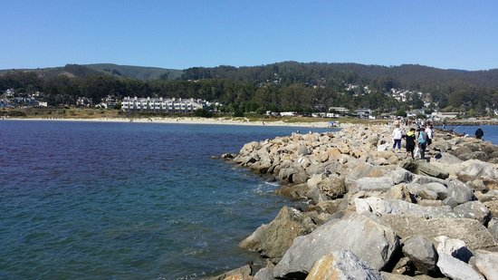 Pillar Point RV Park : The weekend we stayed,  July 4th, our RV is parked with an Ocean view next to the hotel with an