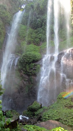 Singaraja, Indonesien: Sekumpul Waterfall - The big one!