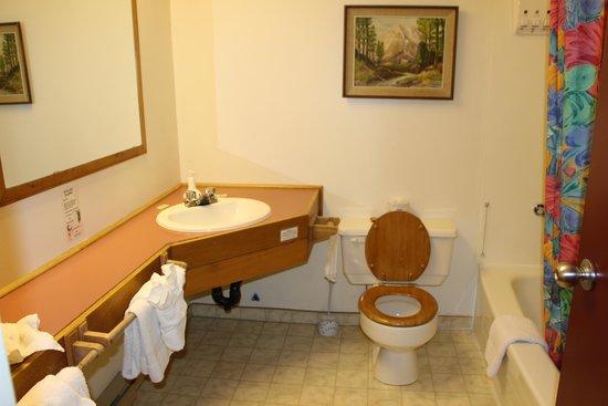 Westwind Inn : Bathroom simple but clean