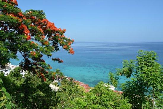 El Greco Resort: Pool View