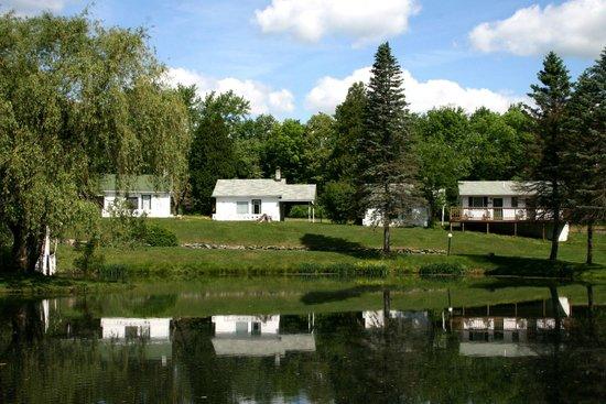 Chestnut Grove Resort: Vista