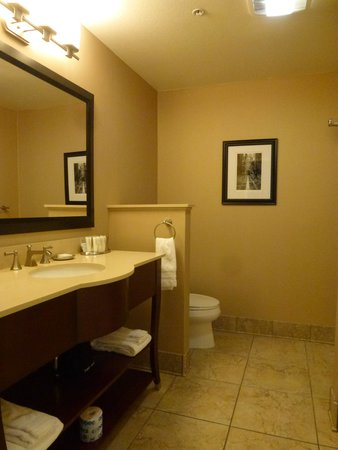 BEST WESTERN PLUS Stevenson Manor: Large Bathroom