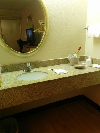 Red Roof Inn Buffalo Niagara Airport: Sink area with mirror.