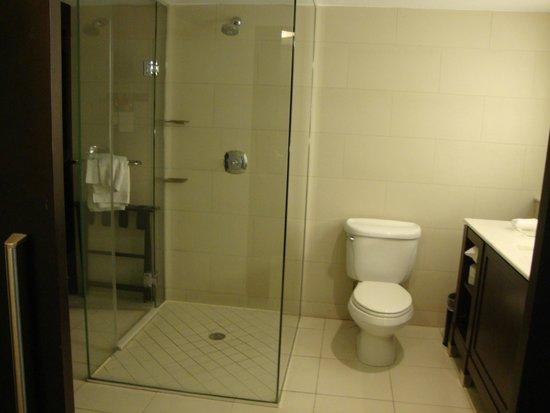 The Condado Plaza Hilton: Shower was sooo relaxing