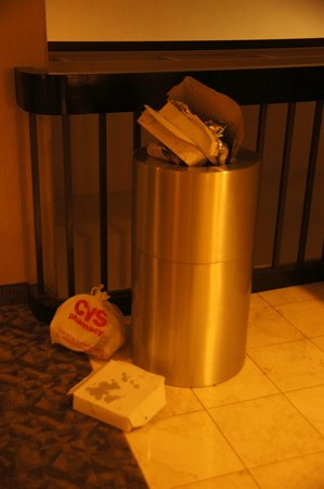 Edward Hotel & Conference Center : Overflowing garbage cans by the elevator.