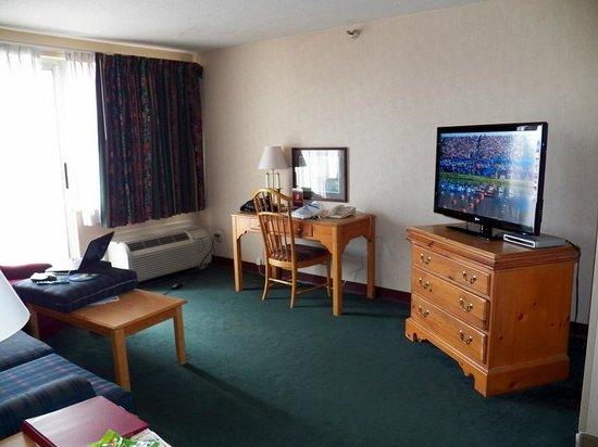 Garfield Suites Hotel: Living Room