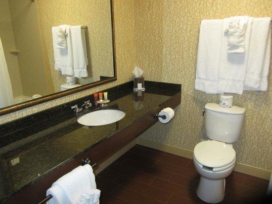 Canaan Valley Resort : Bathroom