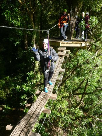Rotorua Canopy Tours: Confidence plus by this stage