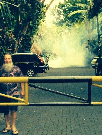 Puri Santrian: Fogging the mosquitos