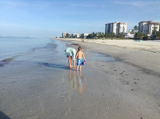 Red Coconut RV Park : the kids in search of shells!