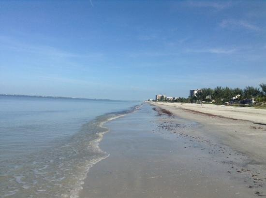 Red Coconut RV Park : Beautiful Florida west coast beach!