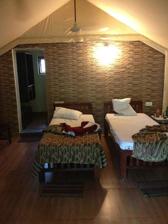 Galibore Nature Camp: Pretty hard bed but it is Glamping!