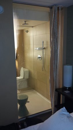 dana hotel and spa: Real water pressure from rain-head shower.