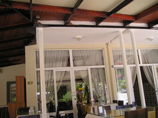 Seler Hotel: Birds nests above dining tables not very hygenic