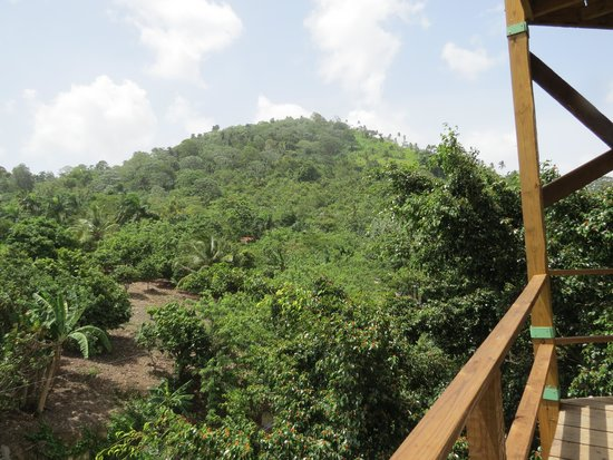 Bavaro Runners Adventures Zip Line La Romana-Bayahibe: Beautiful views