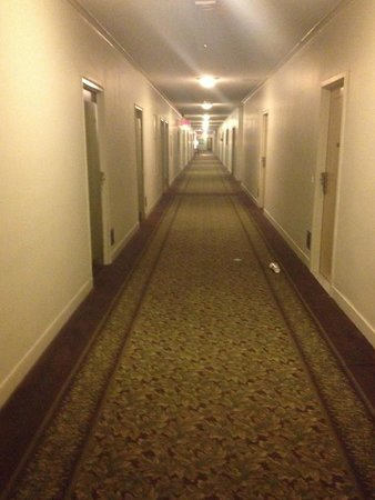 Hotel Pennsylvania New York: This is the actual lighting for hallways
