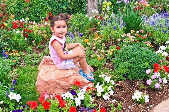L'Auberge de Sedona: flowers everywhere