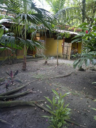 Exotica Lodge: Each room is separated and you can see vegetation everywhere :)