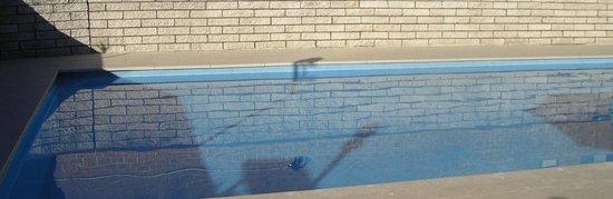 Forster Motor Inn: Pool