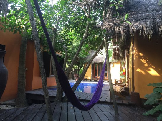 La Zebra Colibri Boutique Hotel: Three jungle cabanas surround the pool - for use by the guests in the jungle cabanas