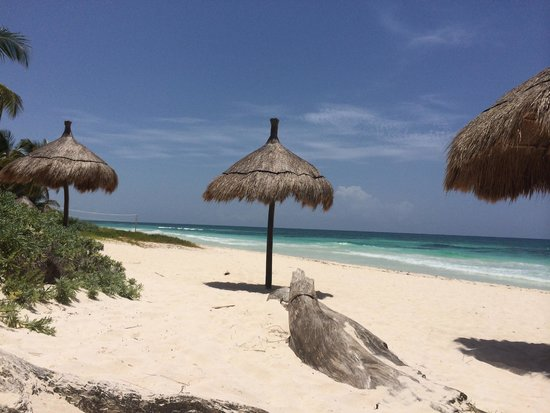 La Zebra Colibri Boutique Hotel: Umbrellas on Beach