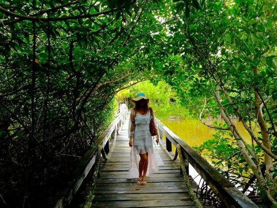 Aji Tapa Bar & Restaurant: Bridge on the Grounds Leading to Beachside Outdoor Restaurant