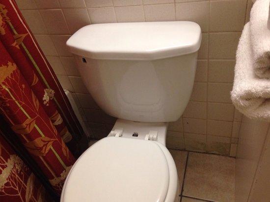 Fiesta Inn & Suites: Baño