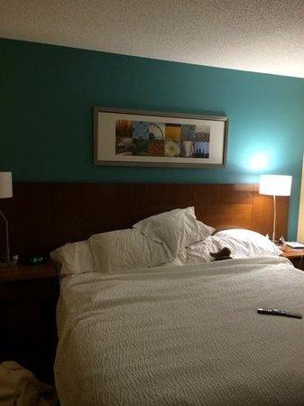 Fairfield Inn & Suites Galesburg: room 311