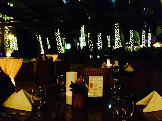 Ambassador in Paradise Resort : DINING UNDER THE STARS AND LIGHTED COCONUT TREES