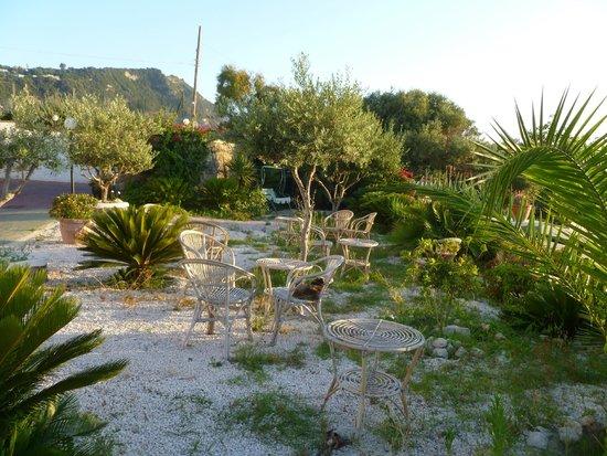 Hotel Punta Imperatore : Giardino