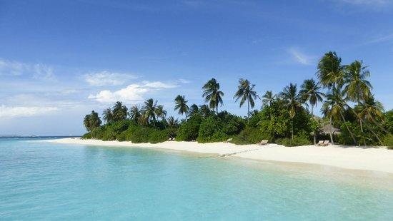 The Sun Siyam Iru Fushi Maldives: Spiaggia