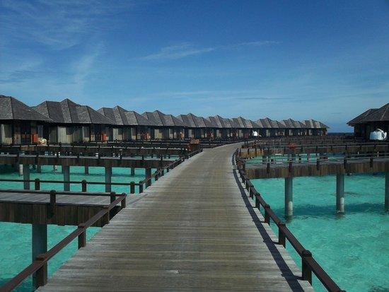 The Sun Siyam Iru Fushi Maldives : Ville