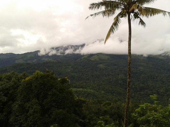 Dream Catcher Plantation Resort: view from room